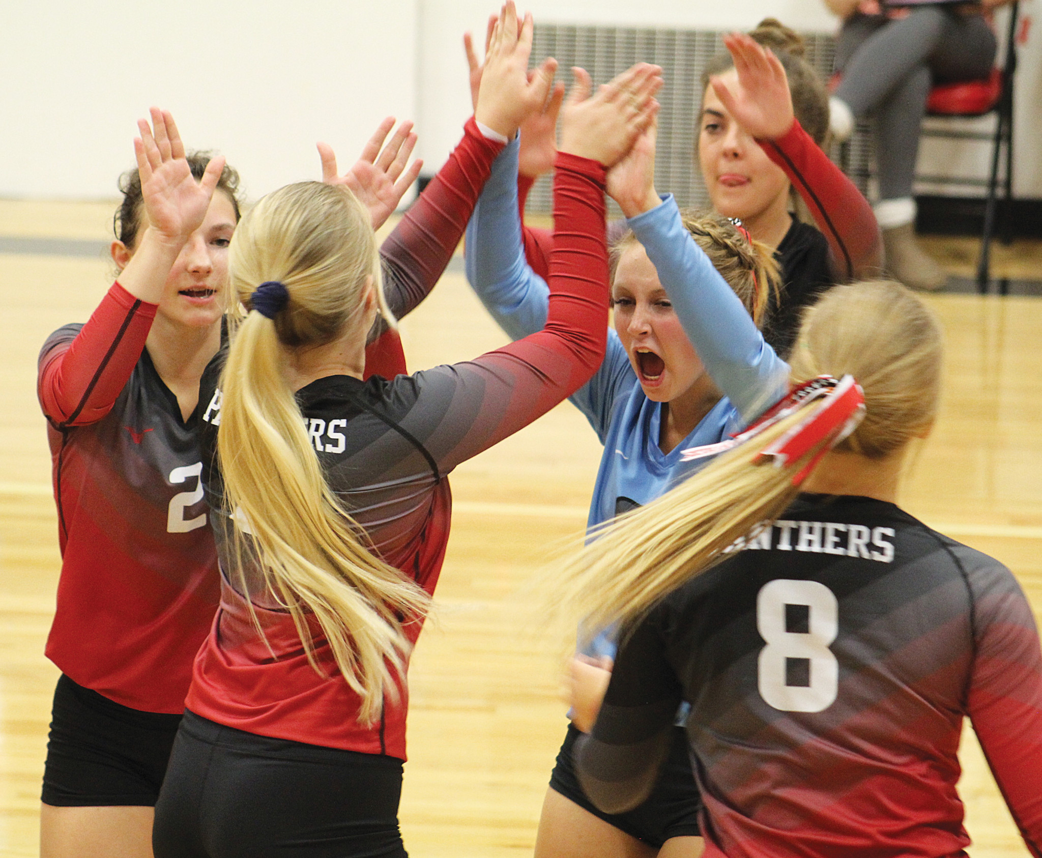 The volleyball team celebrates a good play.